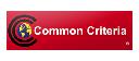 Common Criteria_for CS1182/1184