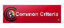 Common Criteria icon
